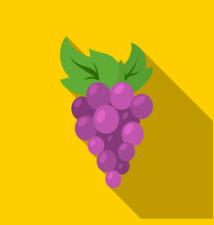 Grapes icon flat singe fruit icon from the food vector