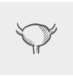 Uterus ovaries sketch icon vector