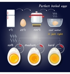 How to make perfect boiled eggs vector