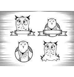 Crazy owl vector
