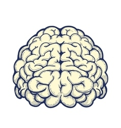Human brain hand drawn icon vector image vector image