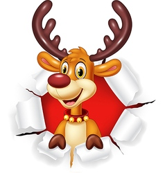 Cartoon funny deer with blank sign isolated vector