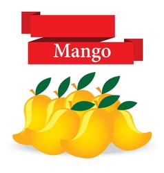 fresh mango on white background vector image vector image