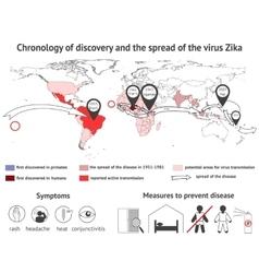 Infographics virus Zika vector image vector image