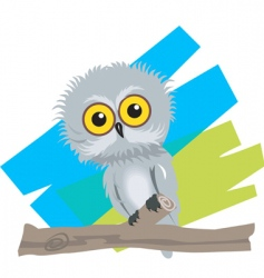 baby bird vector image