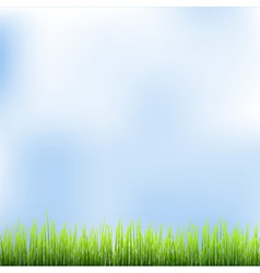 Green grass and blue sky vector image