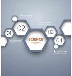 Infographic template with hexgaons vector image vector image