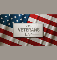 Veterans day celebration national american holiday vector