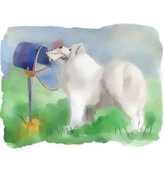 Dog husky near the mailbox vector