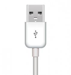 Vector usb plug vector