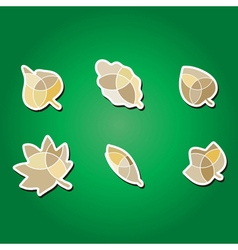 Color icons with leaves vector