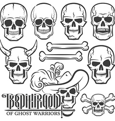 Skulls of various designs vector