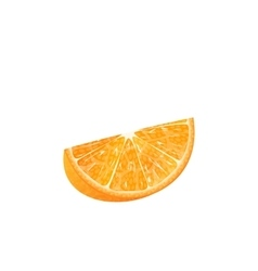 Orange Slice Isolated vector image