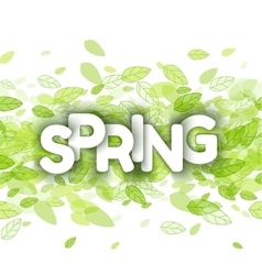 White spring sign over green leaves vector