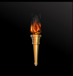 Realistic fire torch vector