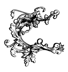 baroque floral element vector image vector image