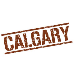 Calgary brown square stamp vector