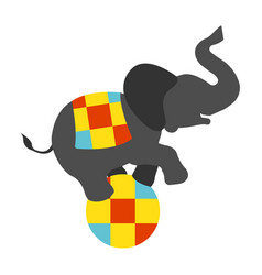 Circus elephant on the ball icon vector