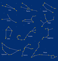 constellation of the zodiac signs vector image
