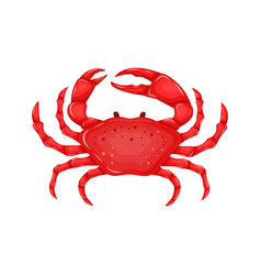 flat red crab isolated on white background - vector image