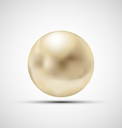 Pearl isolated on a white background vector