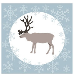 Christmas card reindeer blue vector