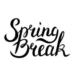 Spring break lettering vector