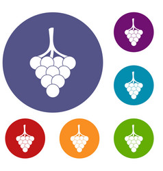 Grapes on the branch icons set vector