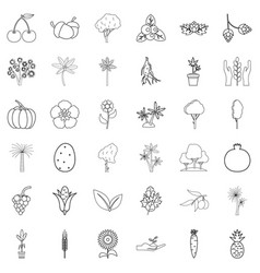 flower icons set outline style vector image vector image