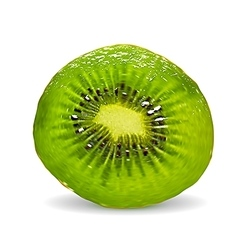 Kiwi on a white background vector image vector image