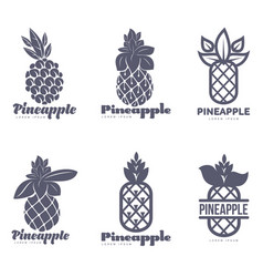 set of black and white graphic pineapple logo vector image