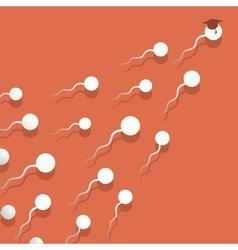 sperm vector image vector image