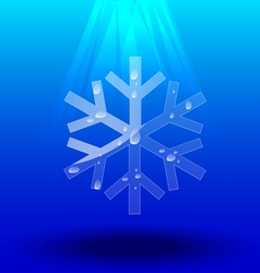 Snowflakes crystal vector