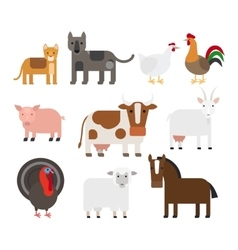 Domestic animal flat icons vector