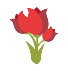 cute roses isolated icon vector image