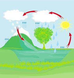 Cycle water in nature environment vector