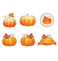 Orange Pumpkin Set vector image vector image