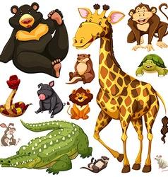 Different wild animals together - photo#35