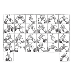 Sign language Alphabet vector image