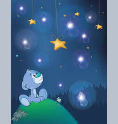 Adventures of little bear fantastic night vector