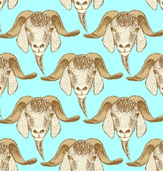 Sketch cute goat head in vintage style vector