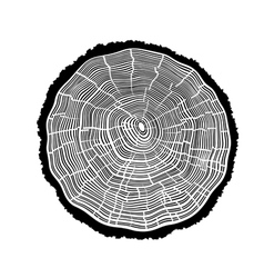 Rings of a tree with cracks vector