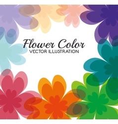 flower color design vector image