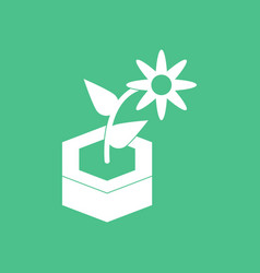 Icon flower in the ground vector