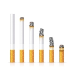 Realistic cigarette set different stages of burn vector