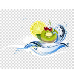 water fresh fruits vector image vector image