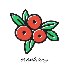 Doodle cranberry hand-drawn object isolated on vector