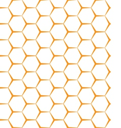 Seamless background backdrop empty honeycomb vector