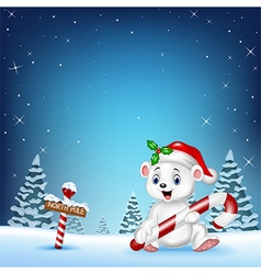 Cartoon happy polar bear holding candy vector
