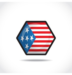 USA flag icon vector image vector image